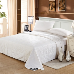 Washable Silk Duvet