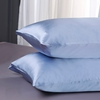 Light Blue Silk Pillowcase
