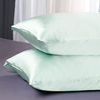 Pale Turquoise Silk Pillowcases