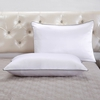 White Silk Pillowcase