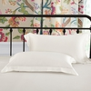 Ivory Luxury Silk Pillowcase
