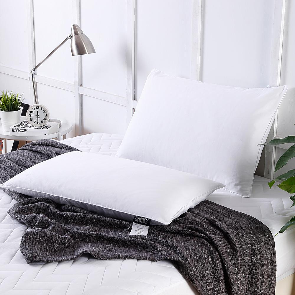 Ideal Silk Pillows