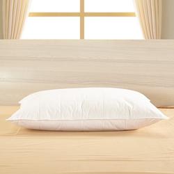 Silk Pillow With Silk Shell