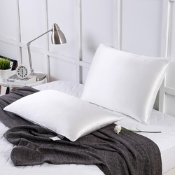 Silk Fitted Pillows