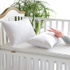 White Silk Cot Lined Pillow