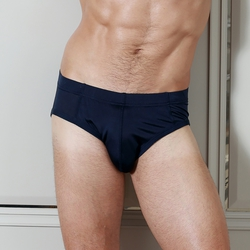 Silk Brief
